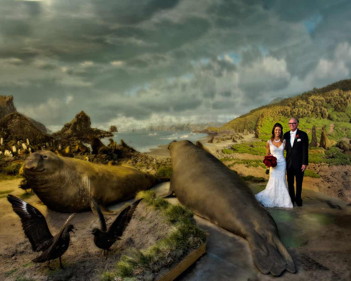 musuem of nature and science wedding_diorama