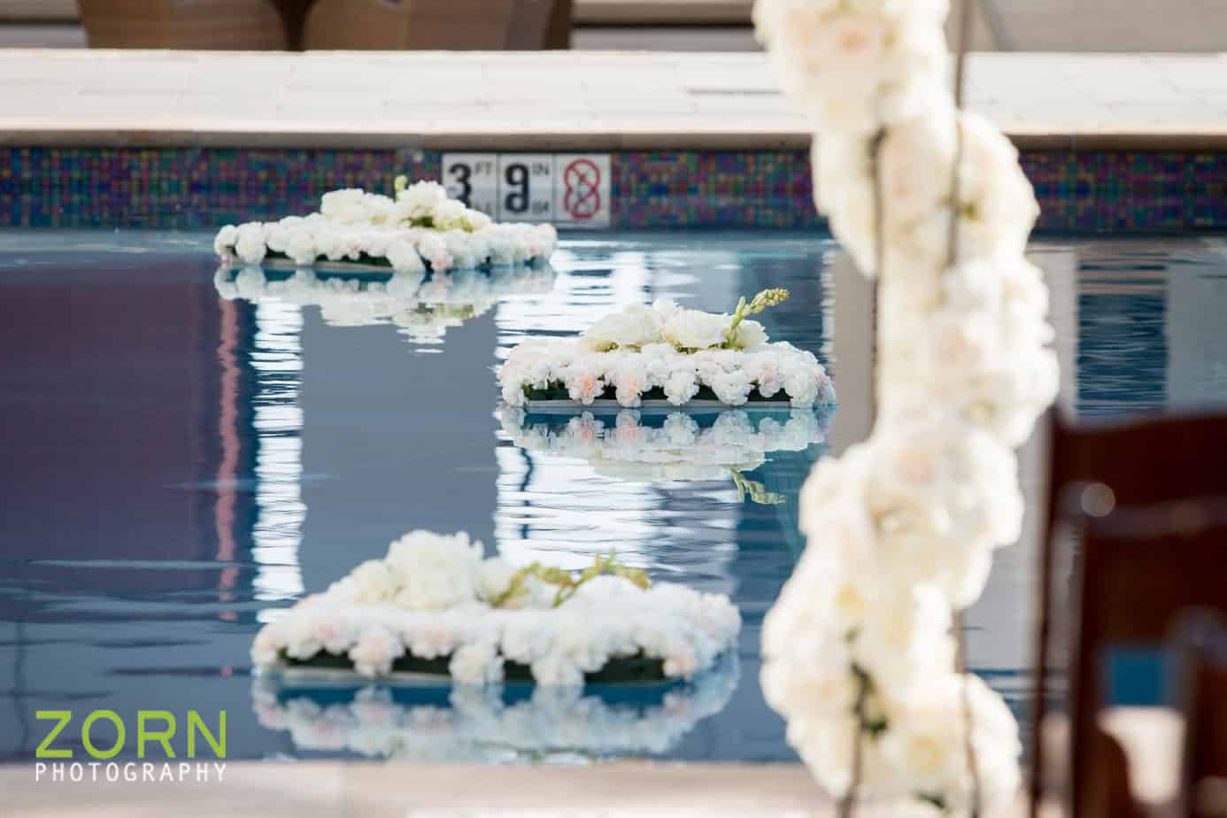floating pool flowers_swank stems